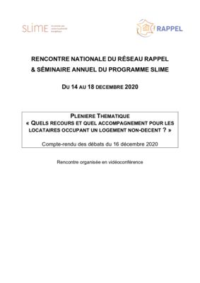 thumbnail of Pleniere-thematique_CR JN RAPPEL décembre 2020_VF