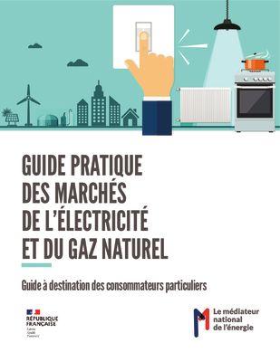 thumbnail of guide-pratique-mne-avril-2021